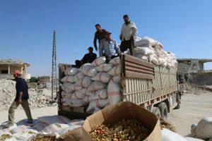 موسم الفستق الحلبي أساس الإقتصاد في إدلب